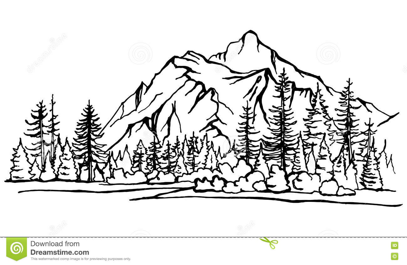 Mountain Landscape Forest Pine Trees Sketch Stock Vector