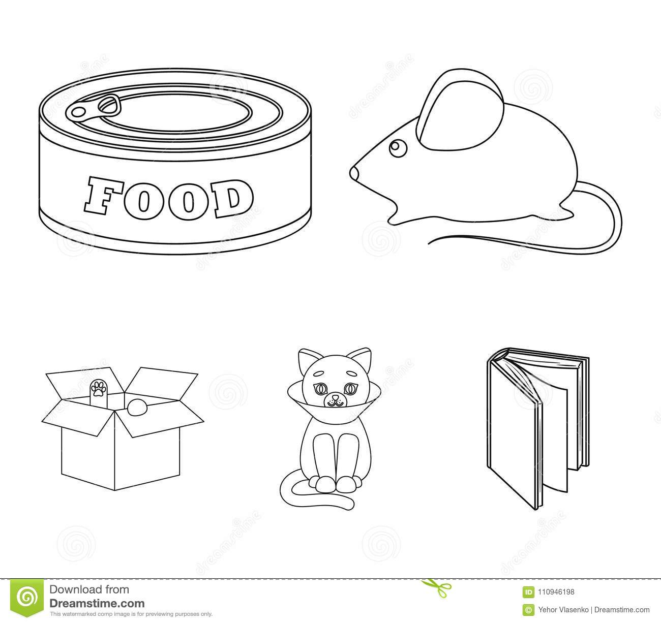 Mouse Food In The Bank Sick Cat Cat In The Box Cat Set