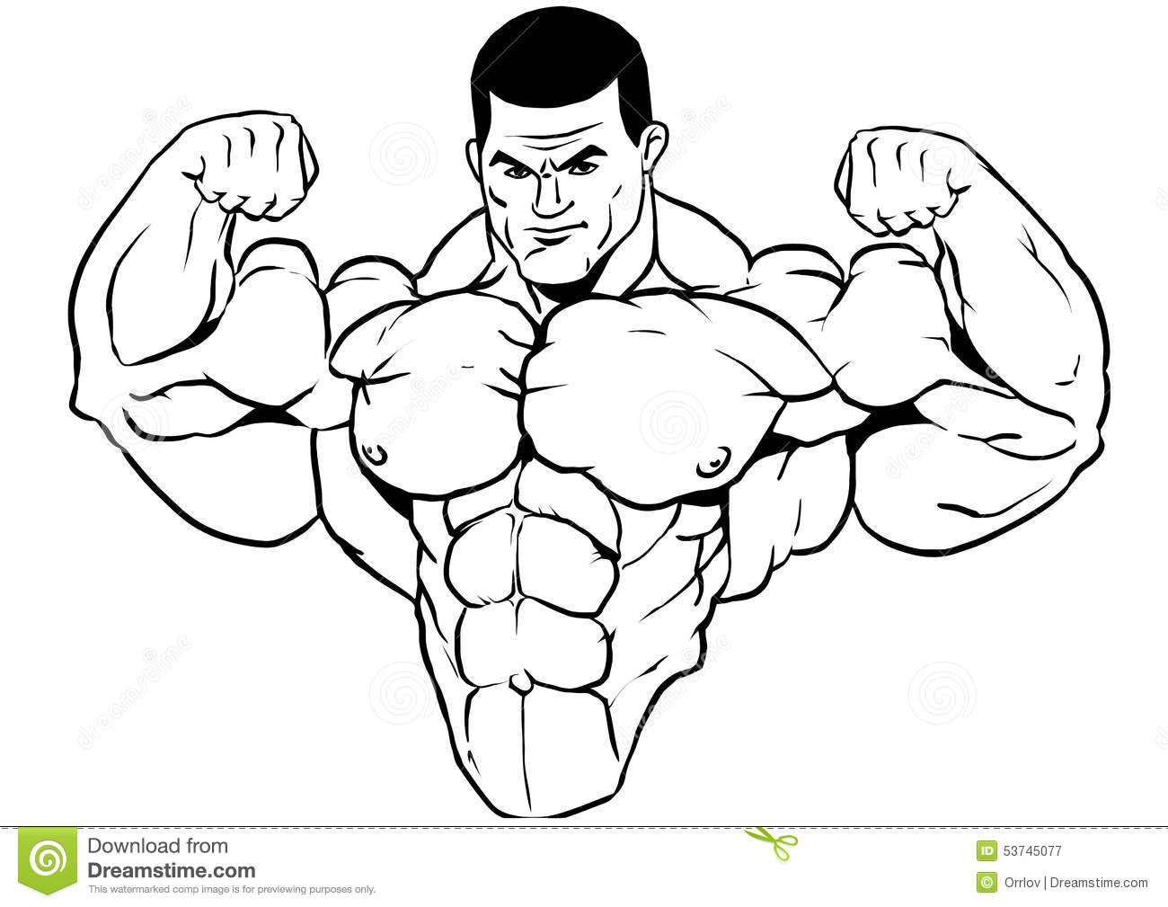Muscular Torso Of A Bodybuilder Stock Vector