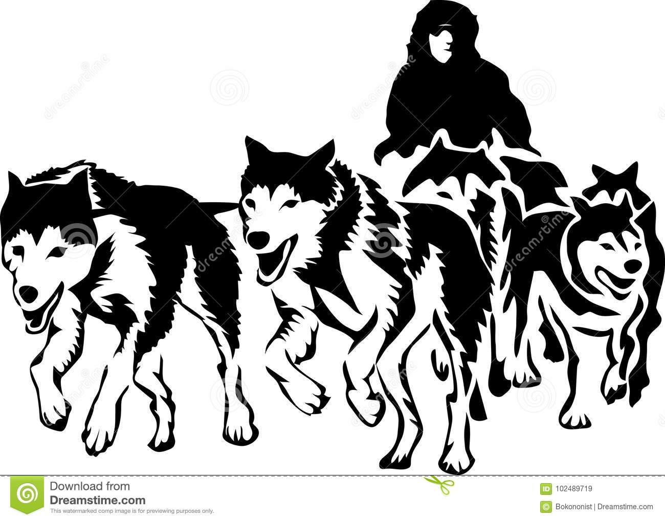 Musher Stock Vector Illustration Of Action Outdoors