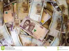 Image result for nigerian currency