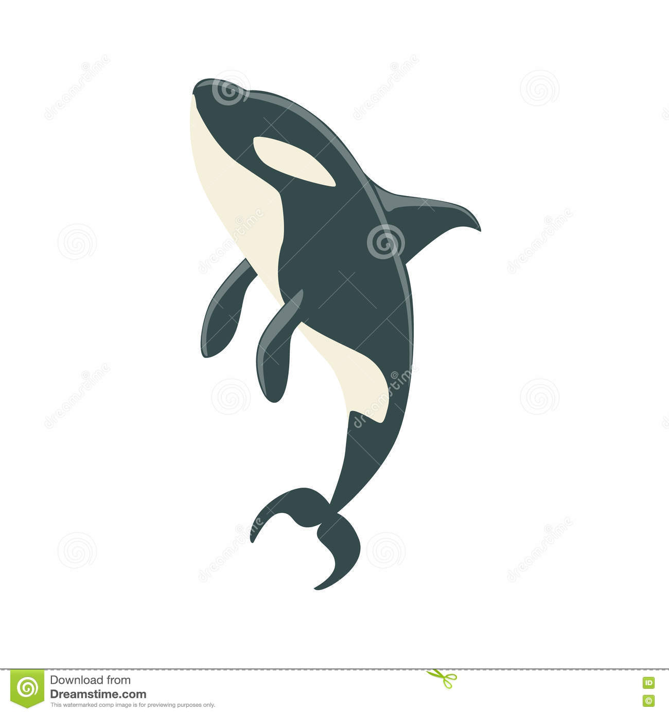 Killer Drawing Orca Whale Realistic