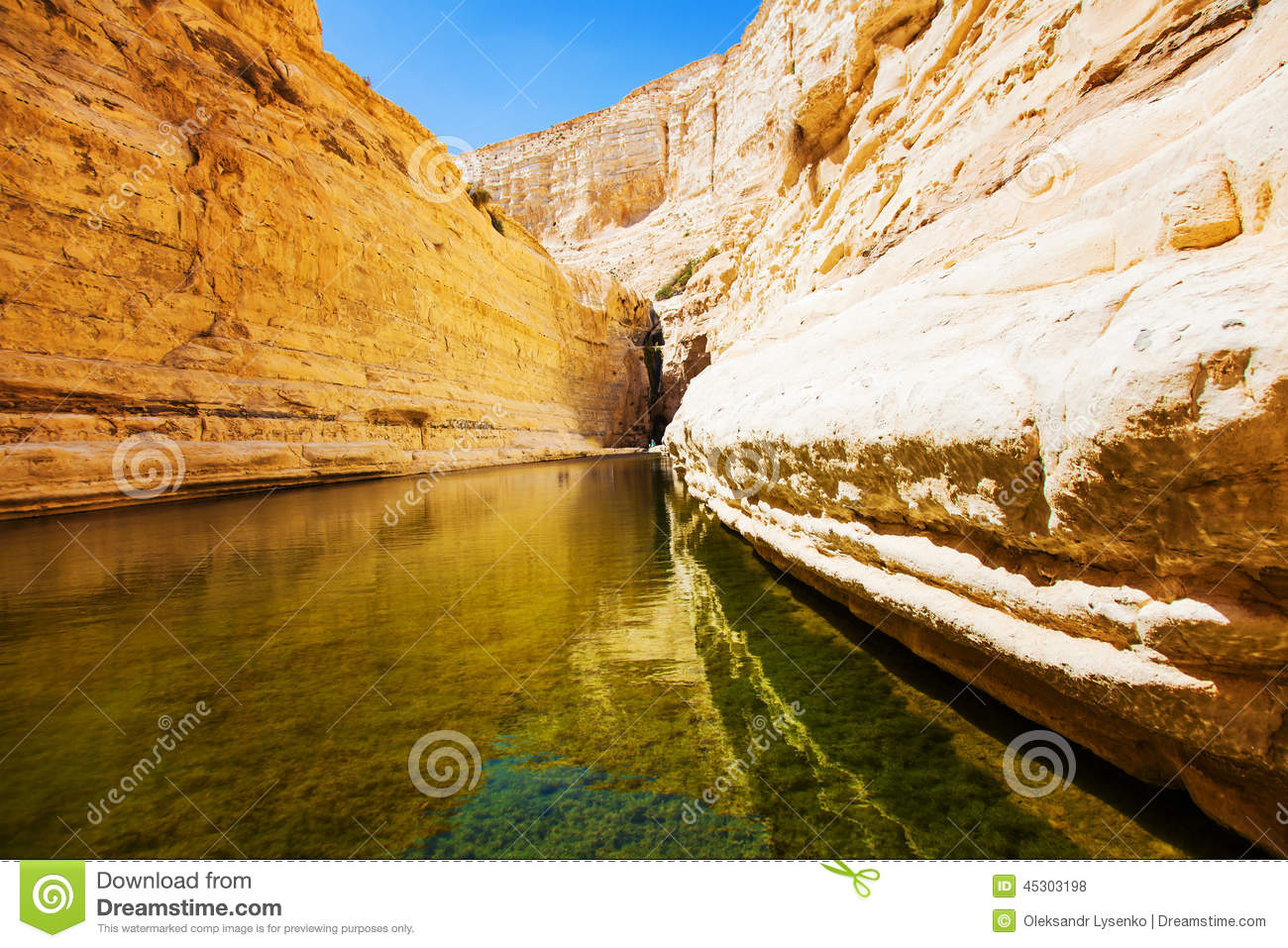 Natural Source Of Water Stock Photo Image Of Marble