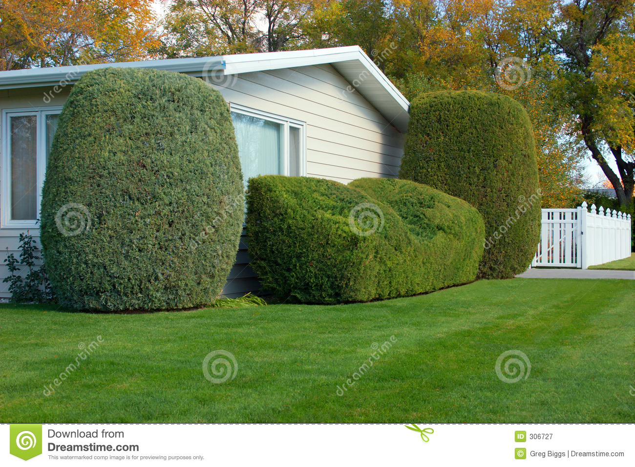 Neatly Trimmed Shrubs 2 Stock Image Image Of Trimmed