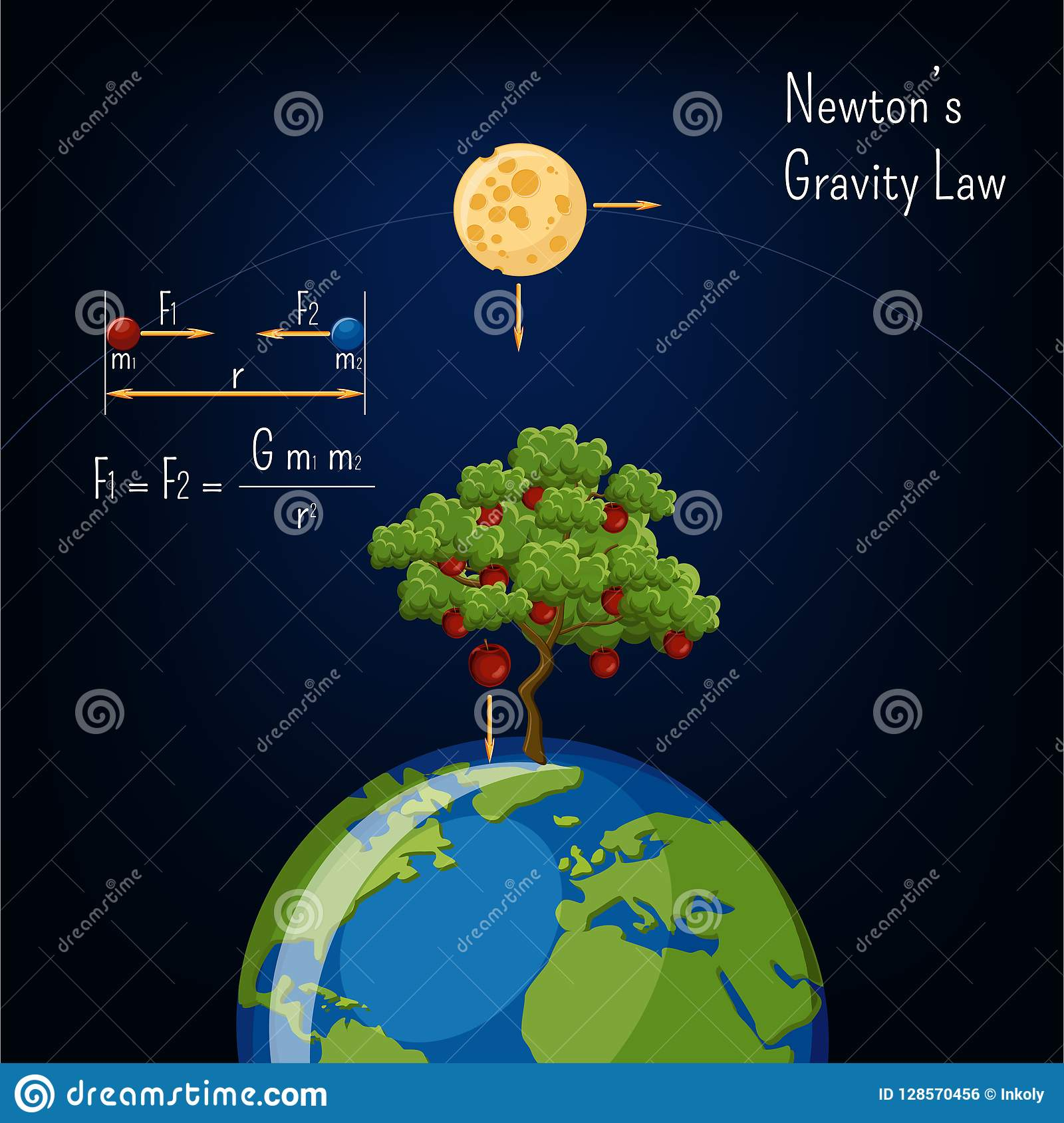 Newton S Gravity Law Infographic With Earth Globe Moon