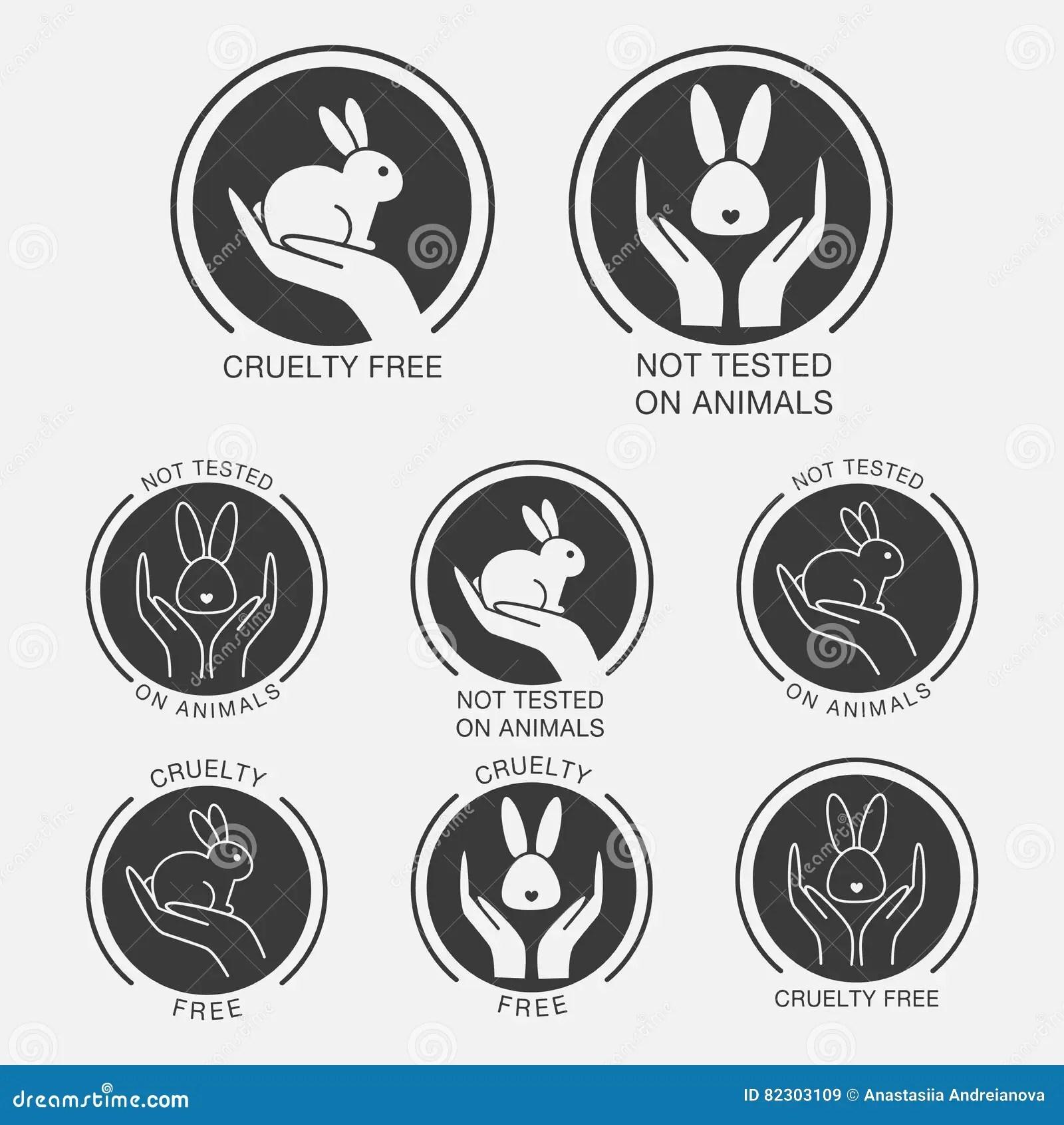 Animal Testing Worksheet