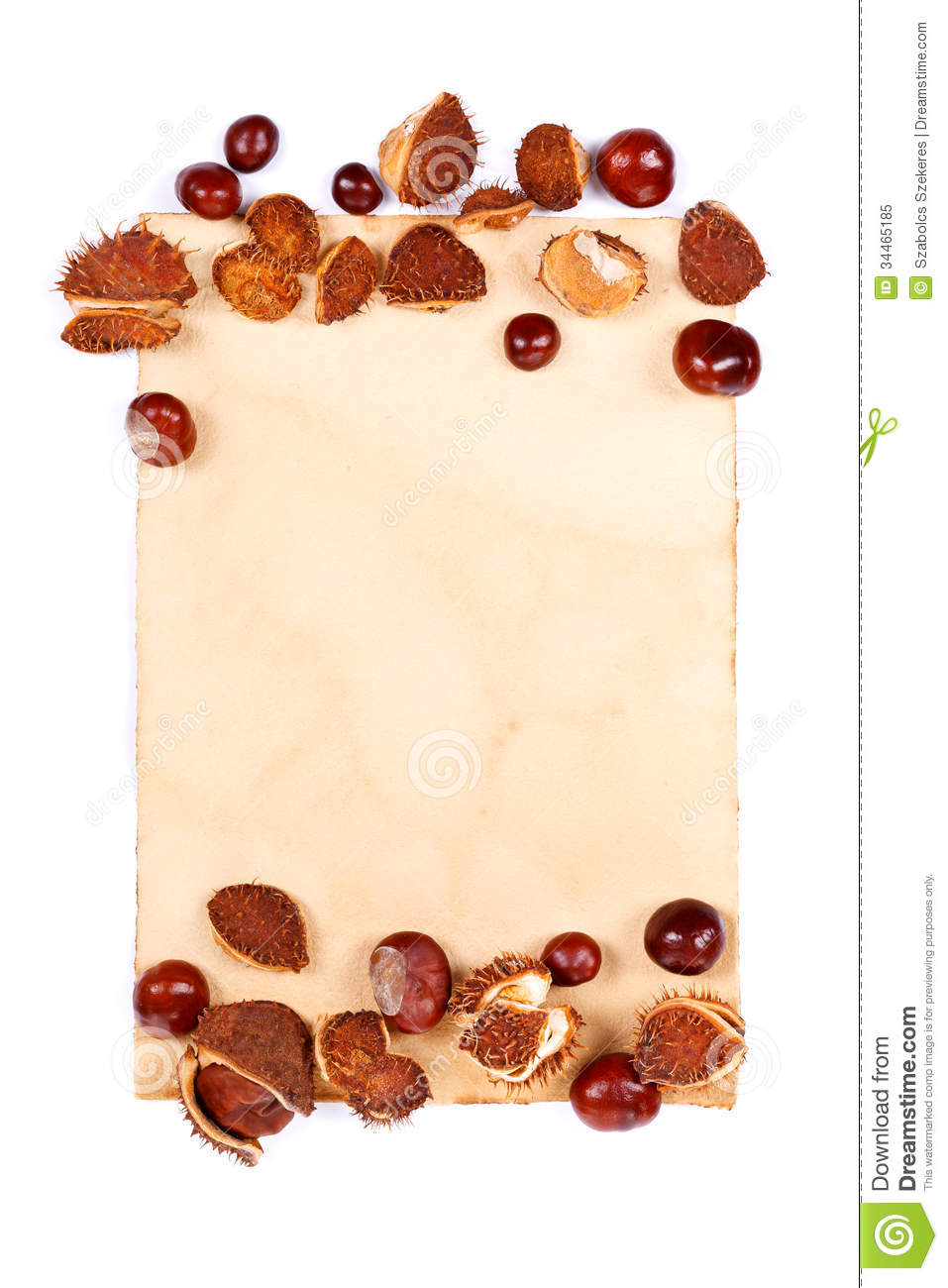 Notepaper With Chestnuts Stock Image Image Of Forest 34465185