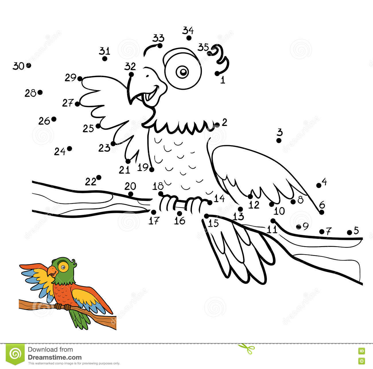 Numbers Game Parrot Stock Vector Illustration Of