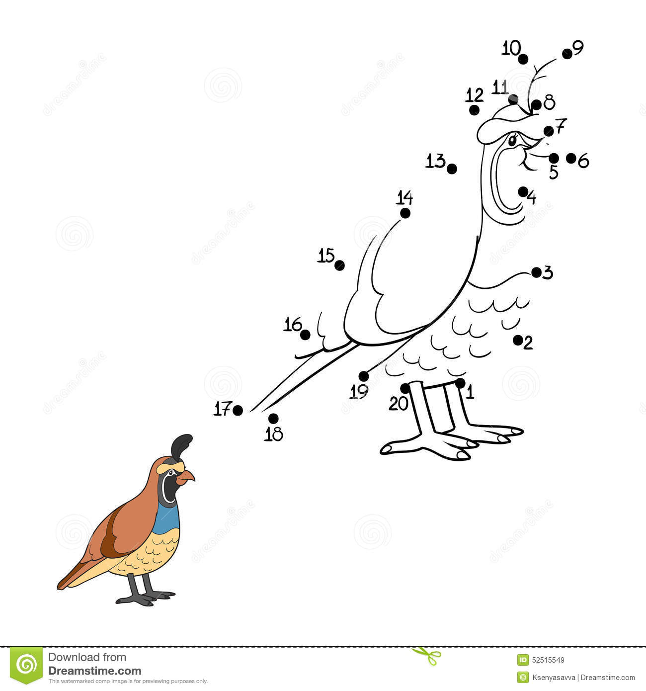 Numbers Game Quail Bird Stock Vector