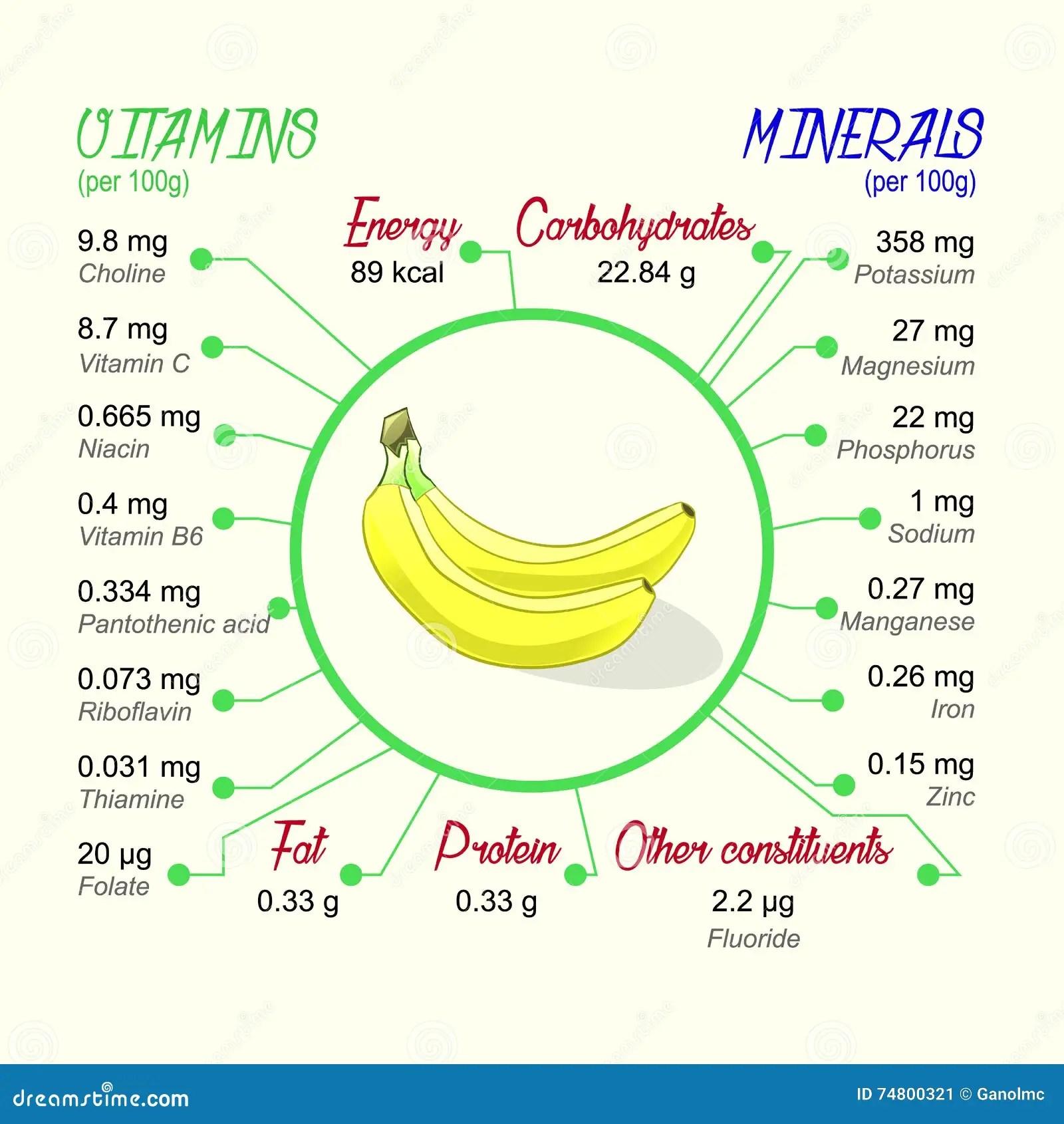 Nutritional Value Of Banana Stock Vector