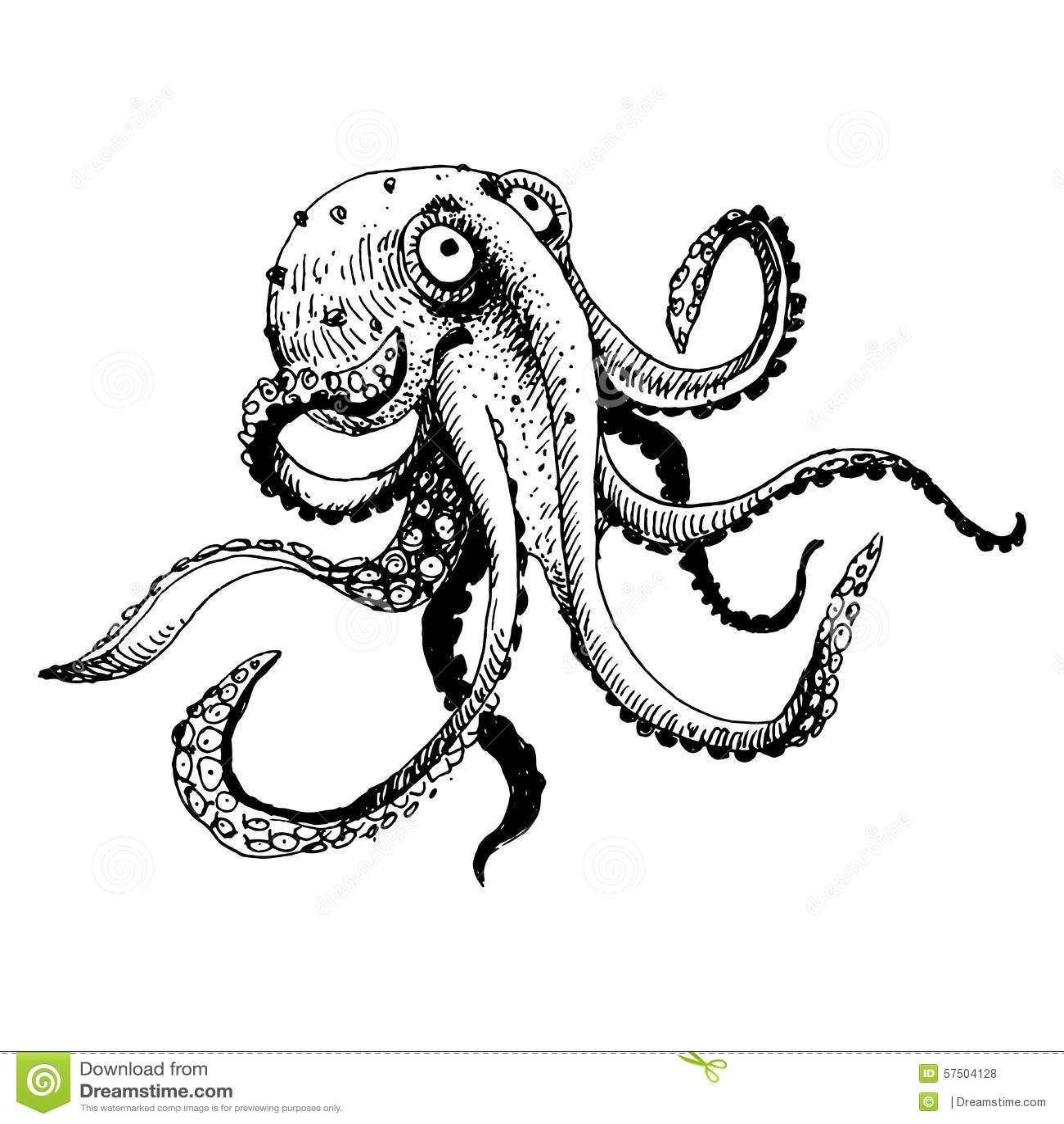 Octopus Stock Vector Illustration Of Illustration