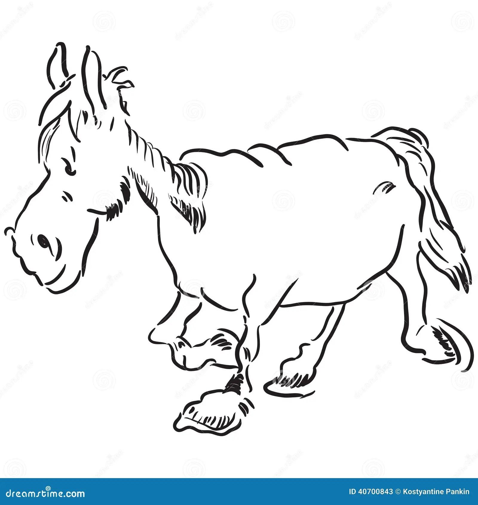 Old Horse Stock Vector Illustration Of Alone Mammal