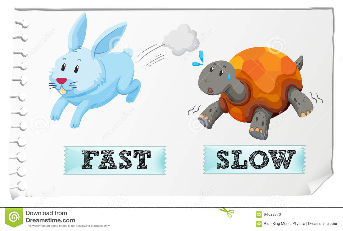 Opposite Adjectives Fast And Slow Stock Vector