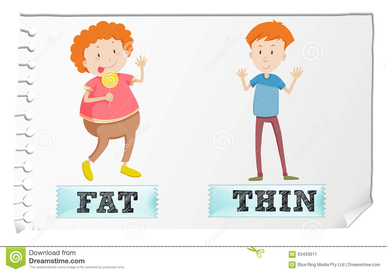 Opposite Adjectives Fat And Thin Stock Vector