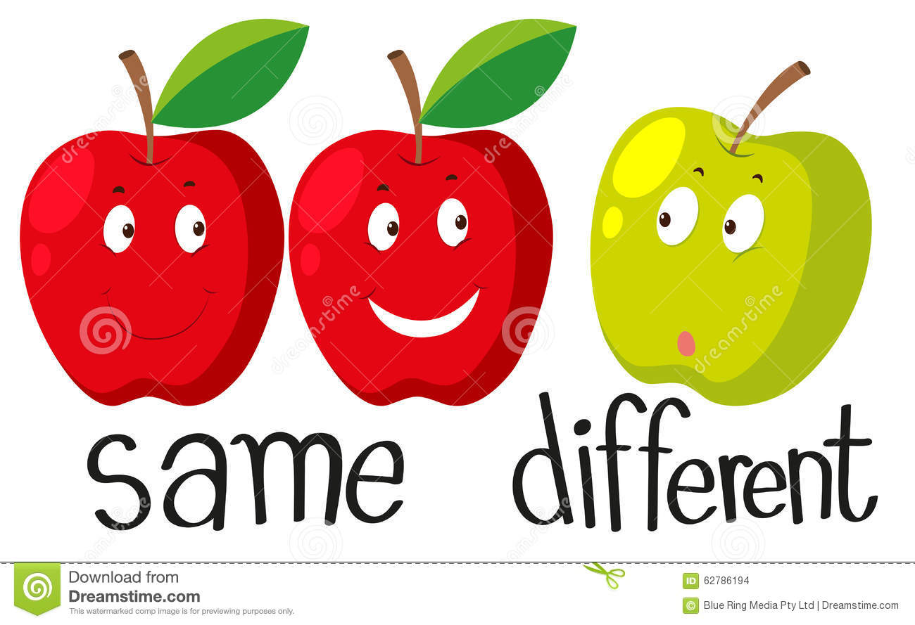 Opposite Adjectives With Same And Different Stock Vector