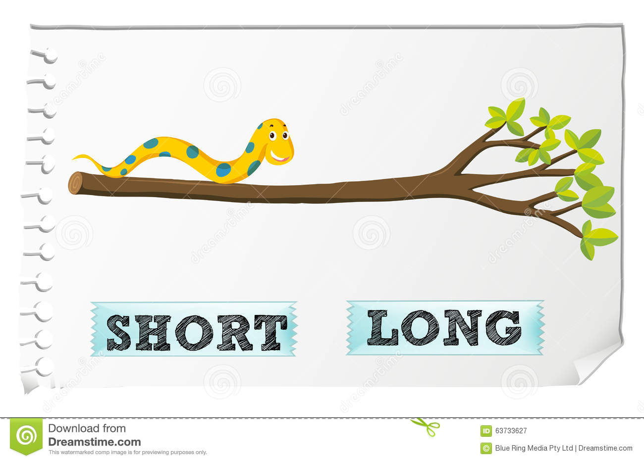 Opposite Adjectives Short And Long Stock Vector