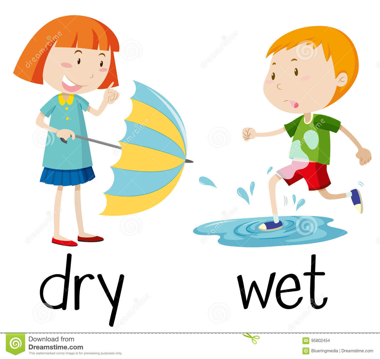 Opposite Wordcard For Dry And Wet Stock Vector