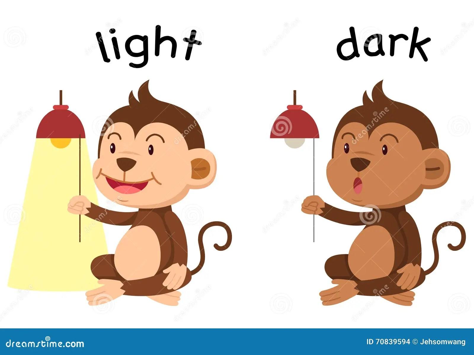 Opposite Words Light And Dark Vector Stock Vector