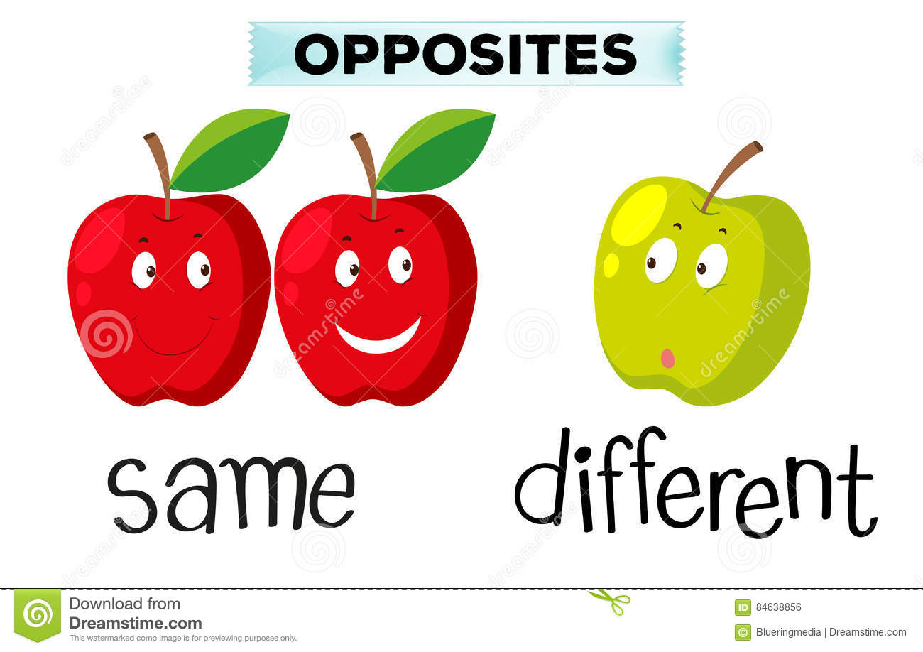 Opposite Words For Same And Different Stock Illustration