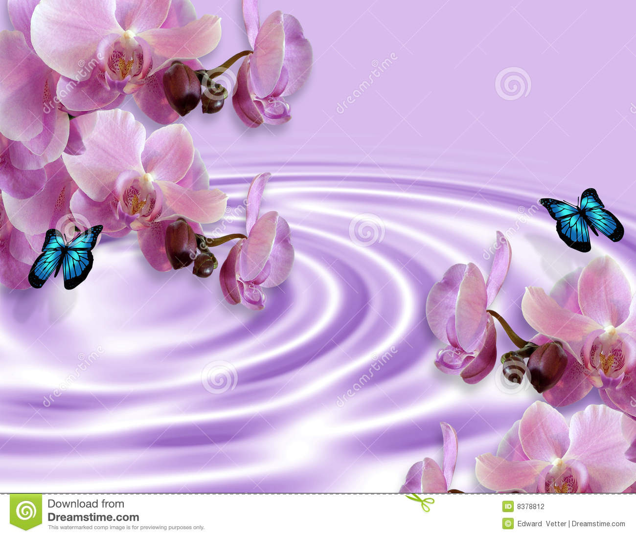 Orchids And Butterflies Fantasy Stock Photography Image 8378812