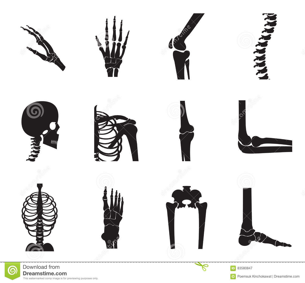 Orthopedic And Spine Icon Set On White Background Stock