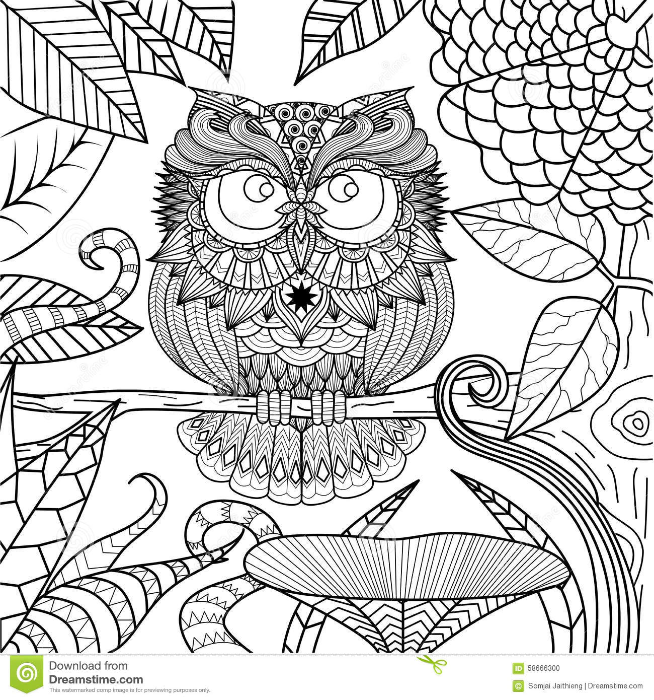 Owl Drawing For Coloring Book Stock Vector