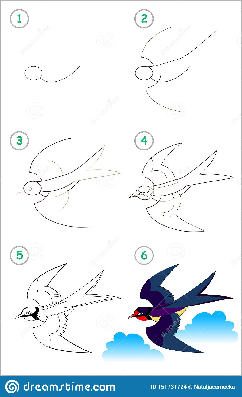 Educational Page For Kids How To Draw Step By Step A Cute Swallow Back To School Illustration De Vecteur Illustration Du Livre Gibier 151731724