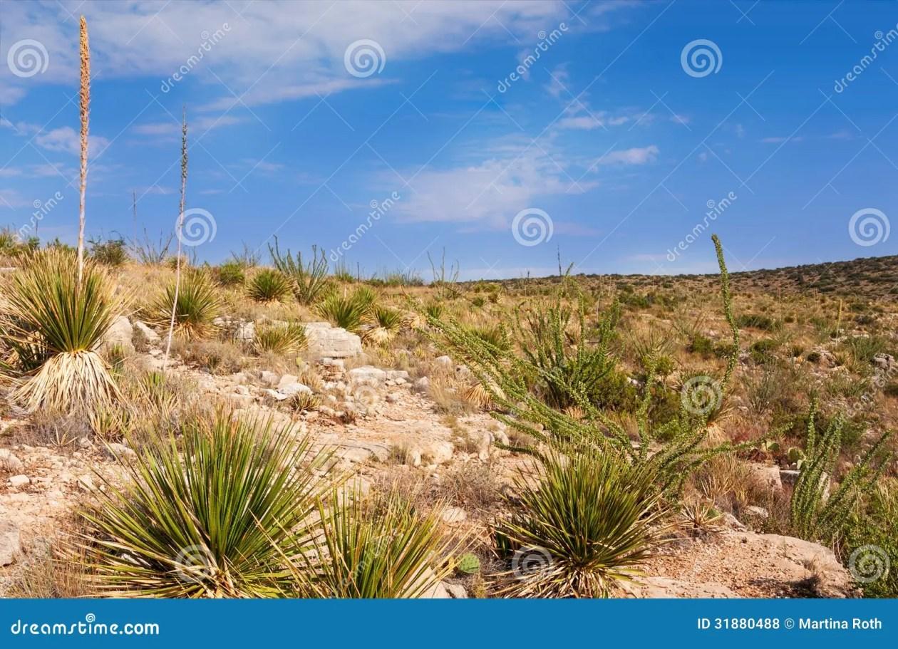 Resultado de imagen para paisajes de mexico imagenes libres