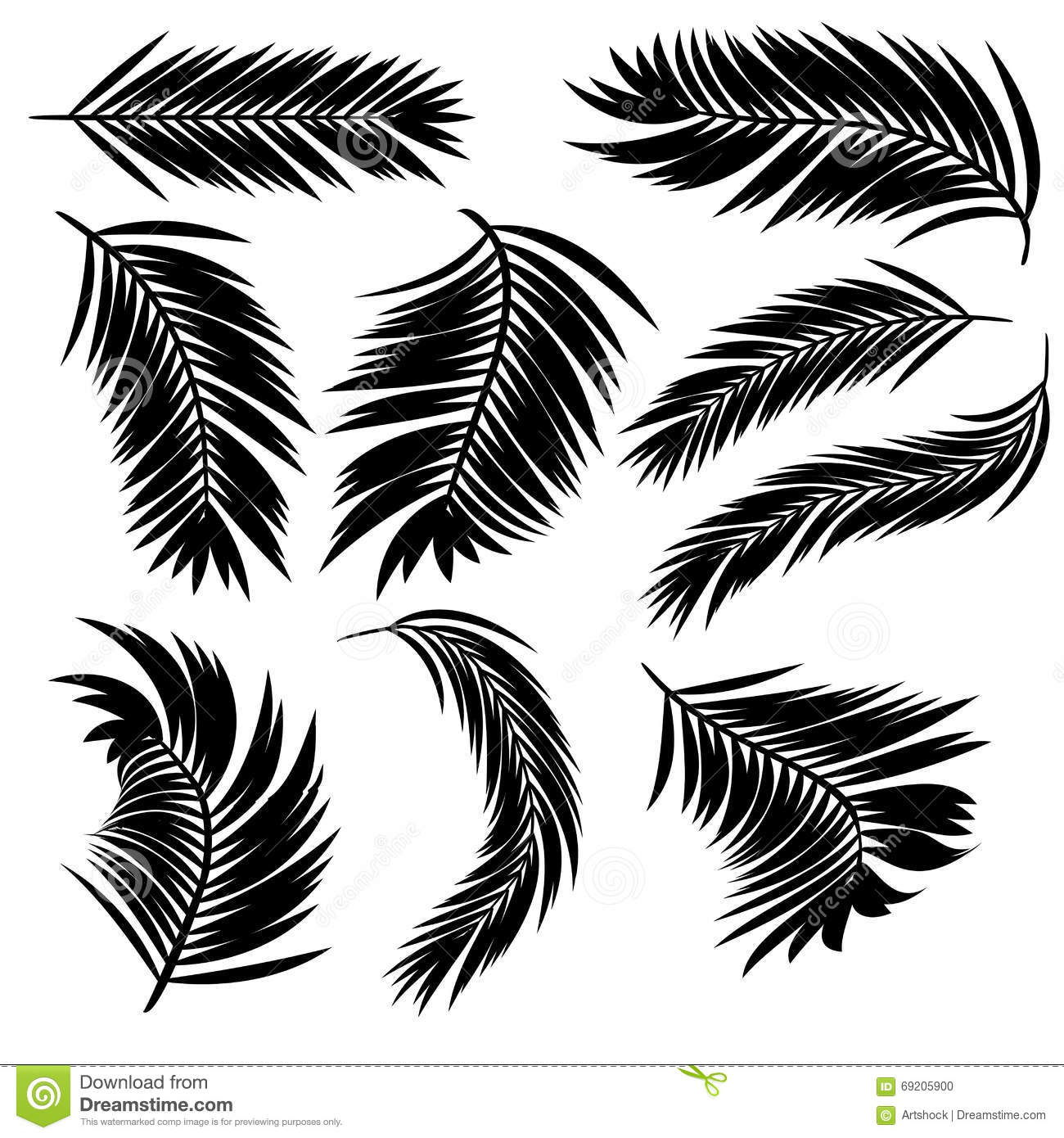 Palm Leaves Silhouette Stock Vector Illustration Of