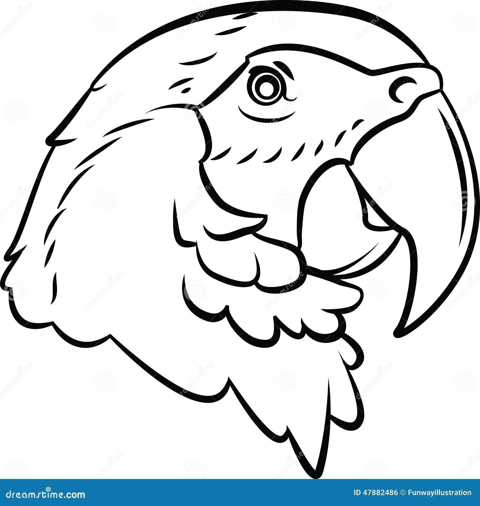 Parrot Stock Vector Illustration Of Wild White Yellow
