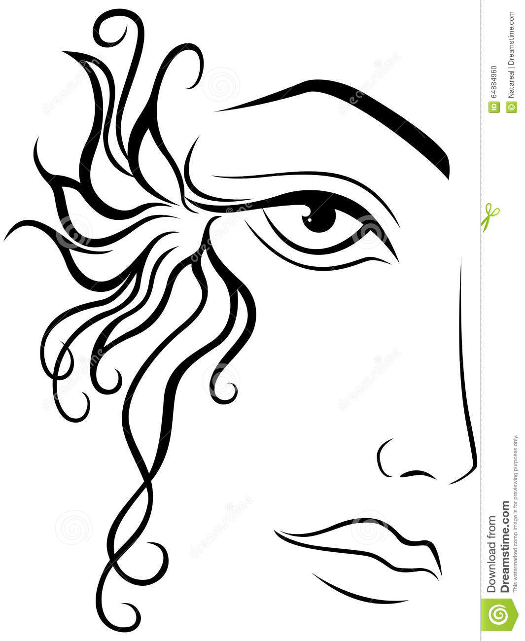 Part Of Female Face Stock Vector Illustration Of