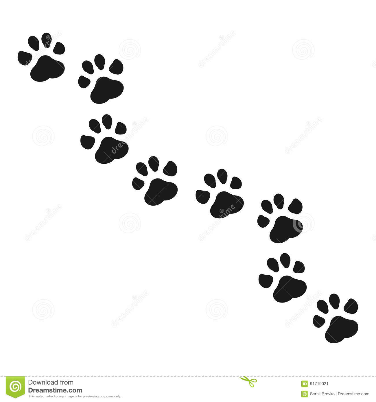 Raccoon Paw Print Stock Illustrations 162 Raccoon Paw