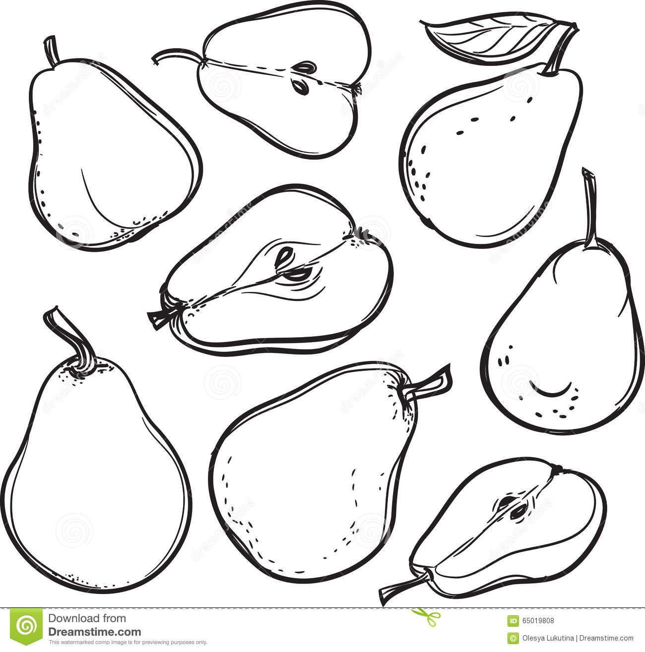 Pear Line Drawing Of A Pear Stock Vector