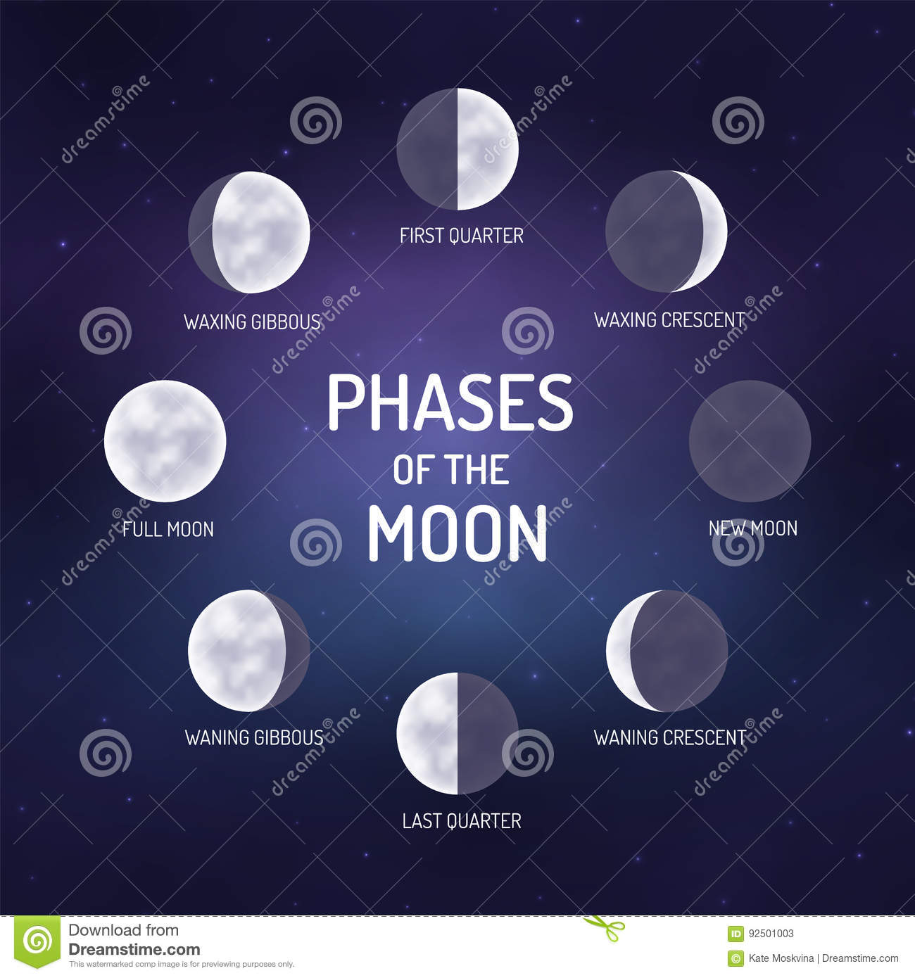 Phases Of The Moon Stock Vector Illustration Of Rotation