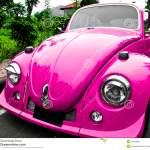 Pink Car Beetle Stock Photo Image Of Outside Motion 16189688