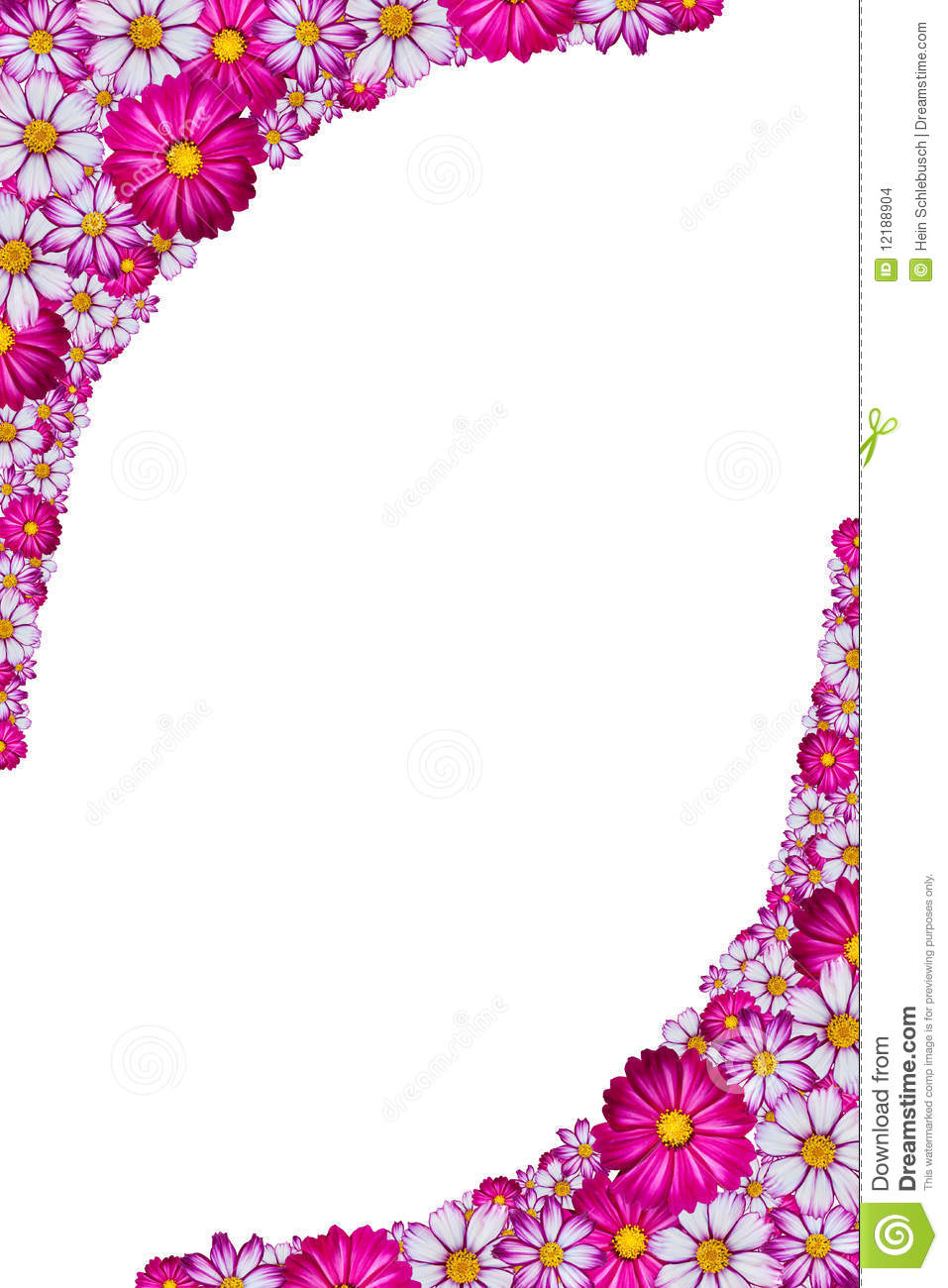 Pink Flower Frame Stock Images Image 12188904