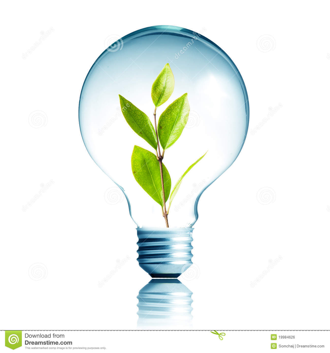 Plant Growing Inside The Light Bulb Stock Photo