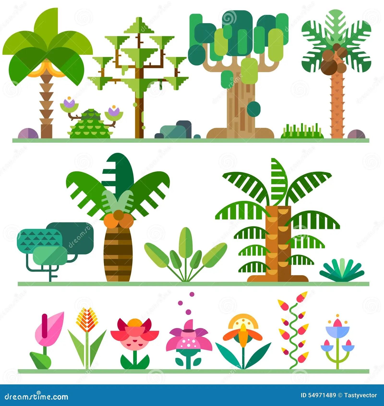 Plantas Tropicales Ilustracion Del Vector Ilustracion De