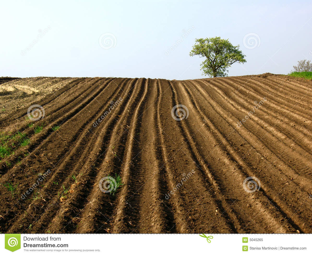 https://i2.wp.com/thumbs.dreamstime.com/z/plowed-field-5045265.jpg