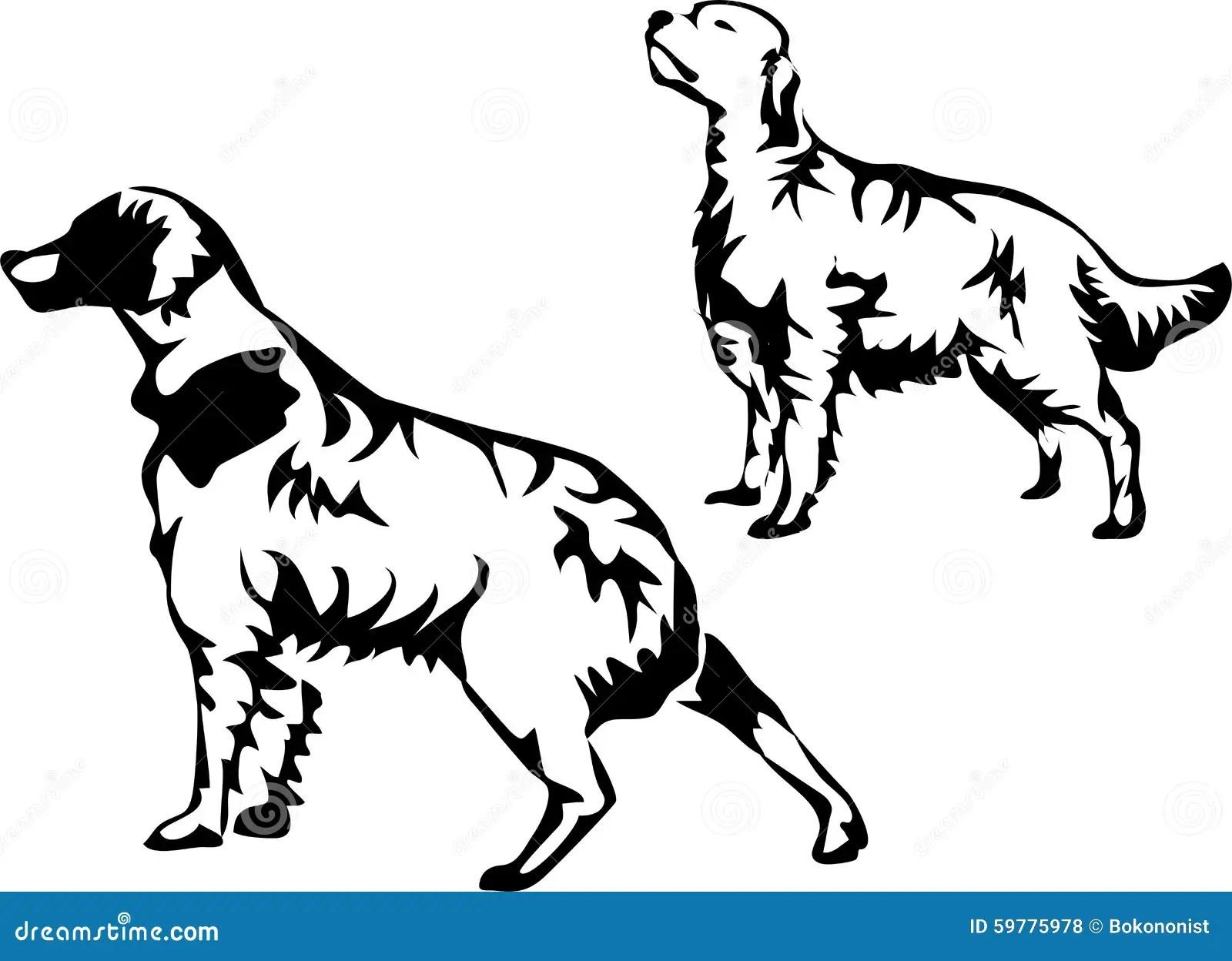 Pointer Dog Stock Vector