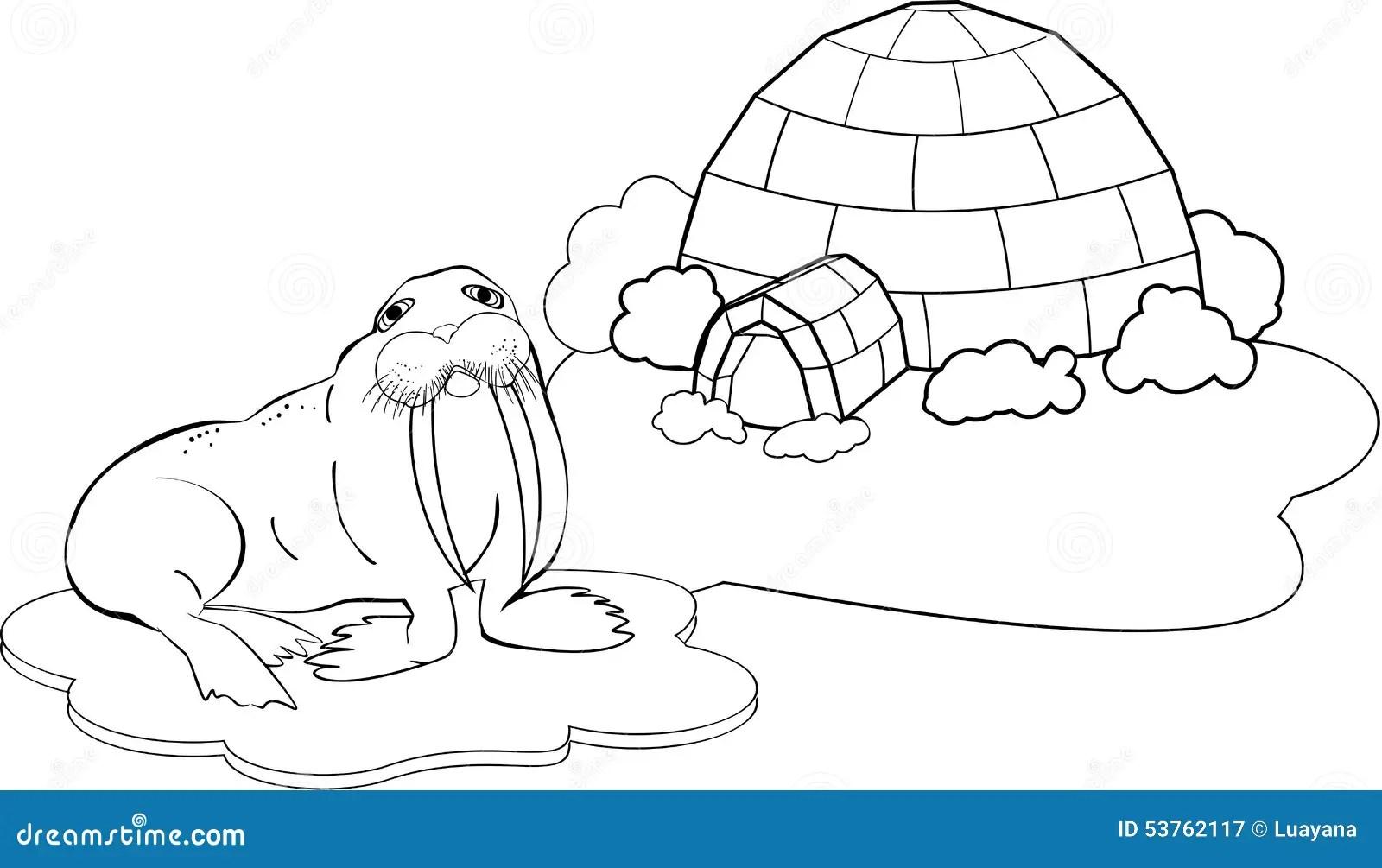Polo Nord Di Coloritura Illustrazione Vettoriale