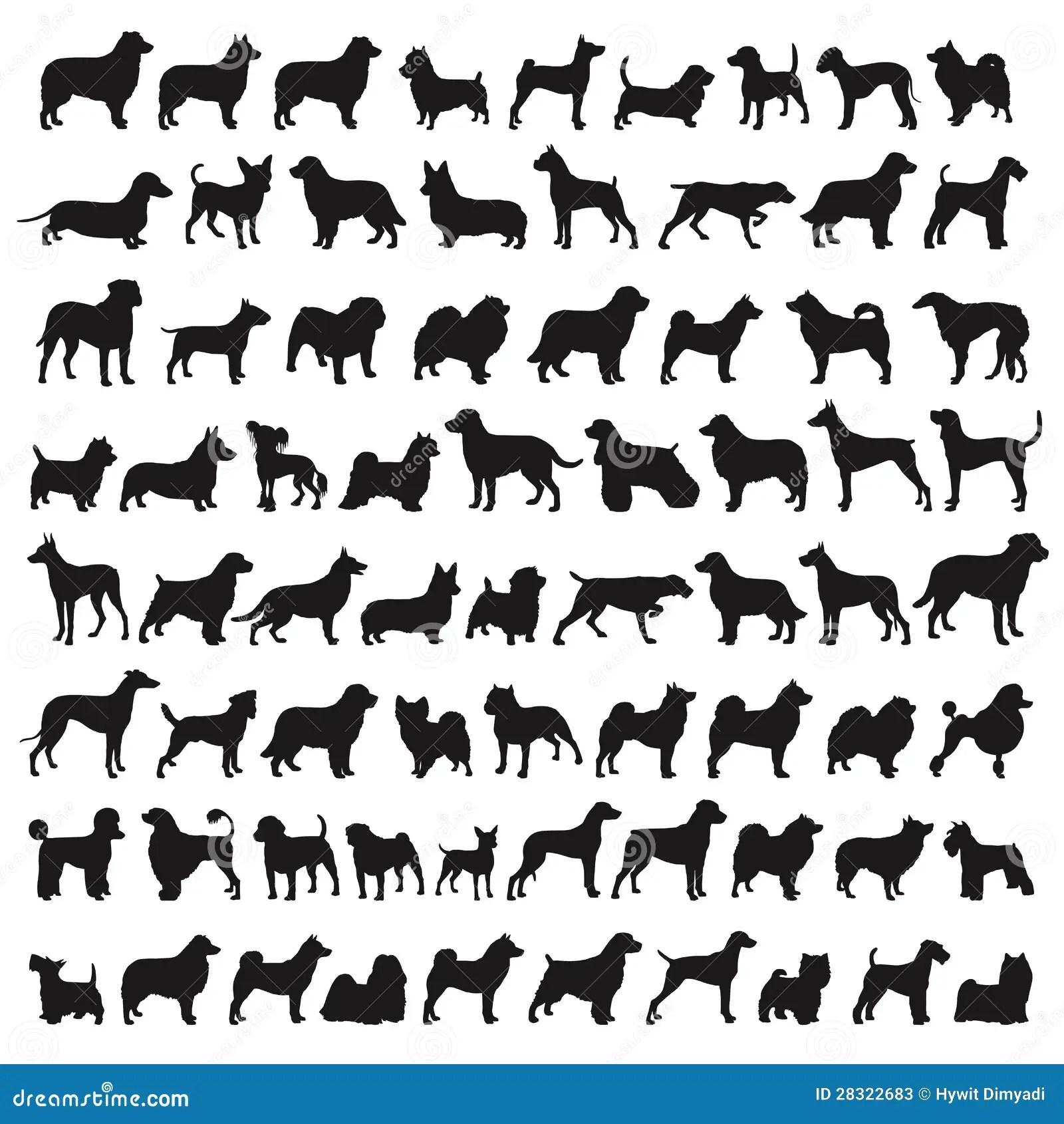 Popular Dog Breeds Stock Illustration Illustration Of