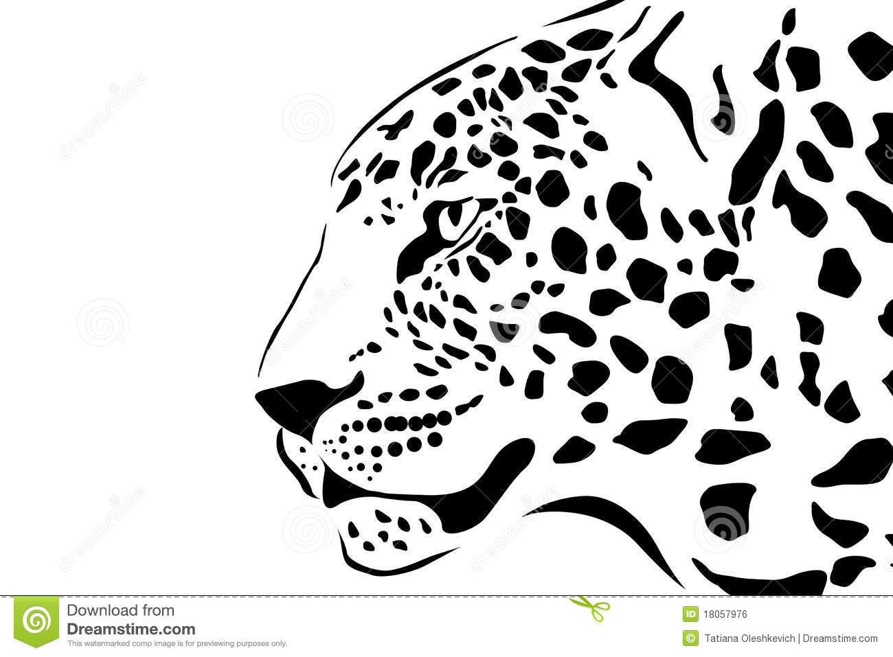 Portrait Of Leopard Stock Illustration Illustration Of
