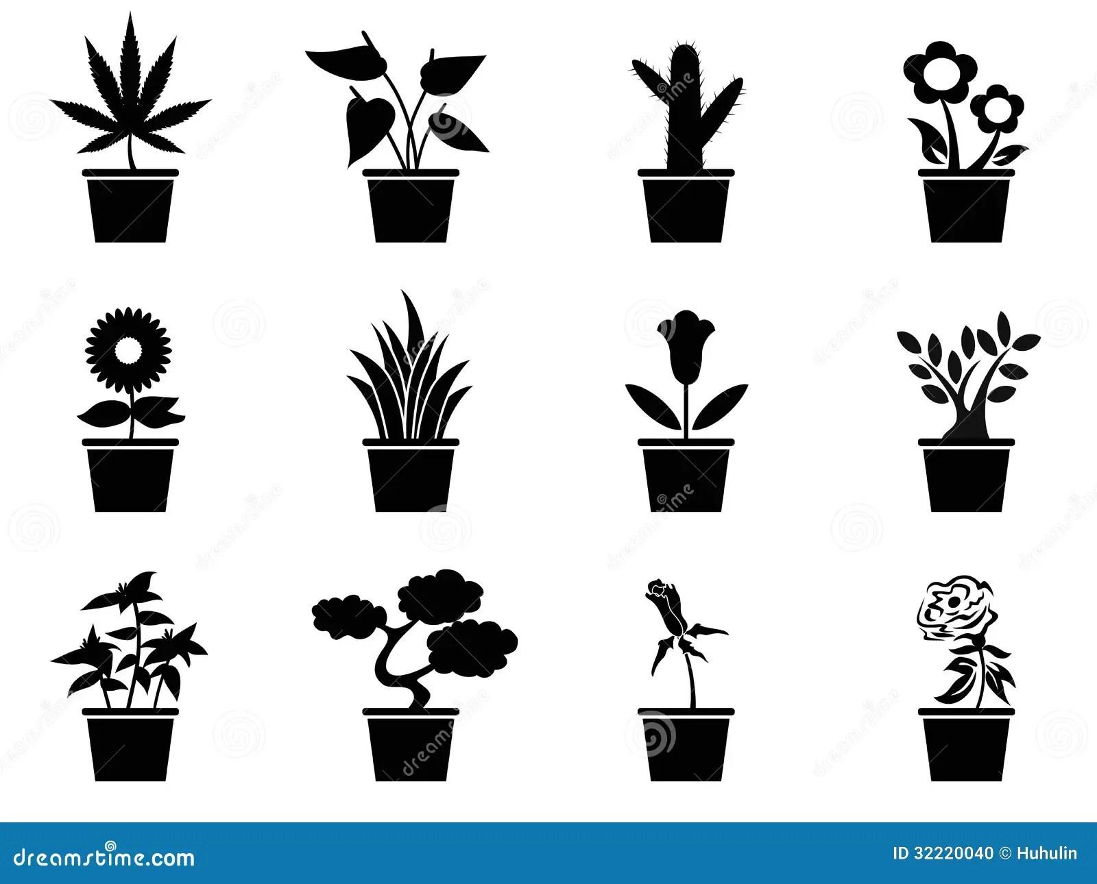 Vector Aloe Vera In Pot Vector Illustration