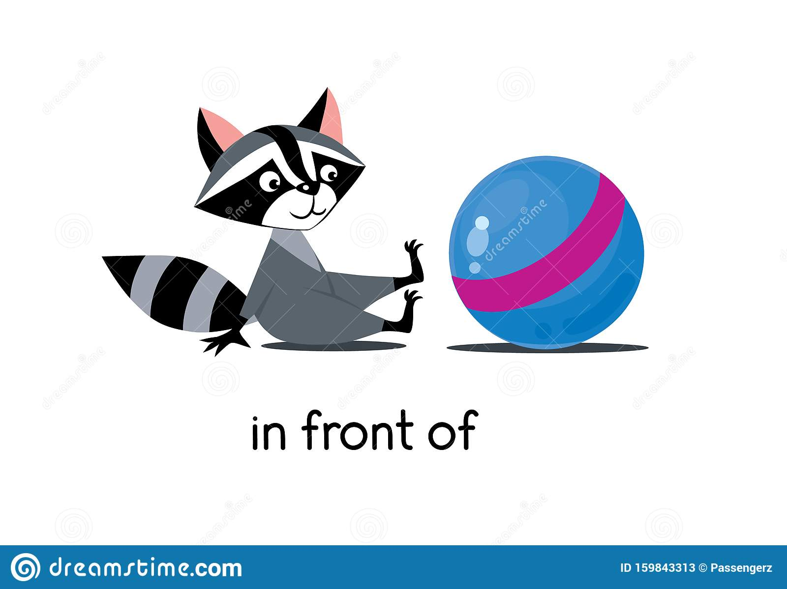 Preposition Of Place Raccoon In Front Of The Ball Stock
