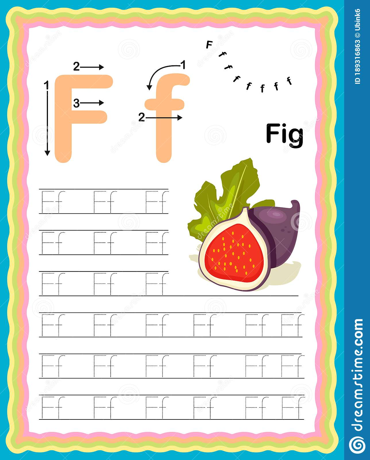 Preschool Colorful Letter F Uppercase And Lowercase