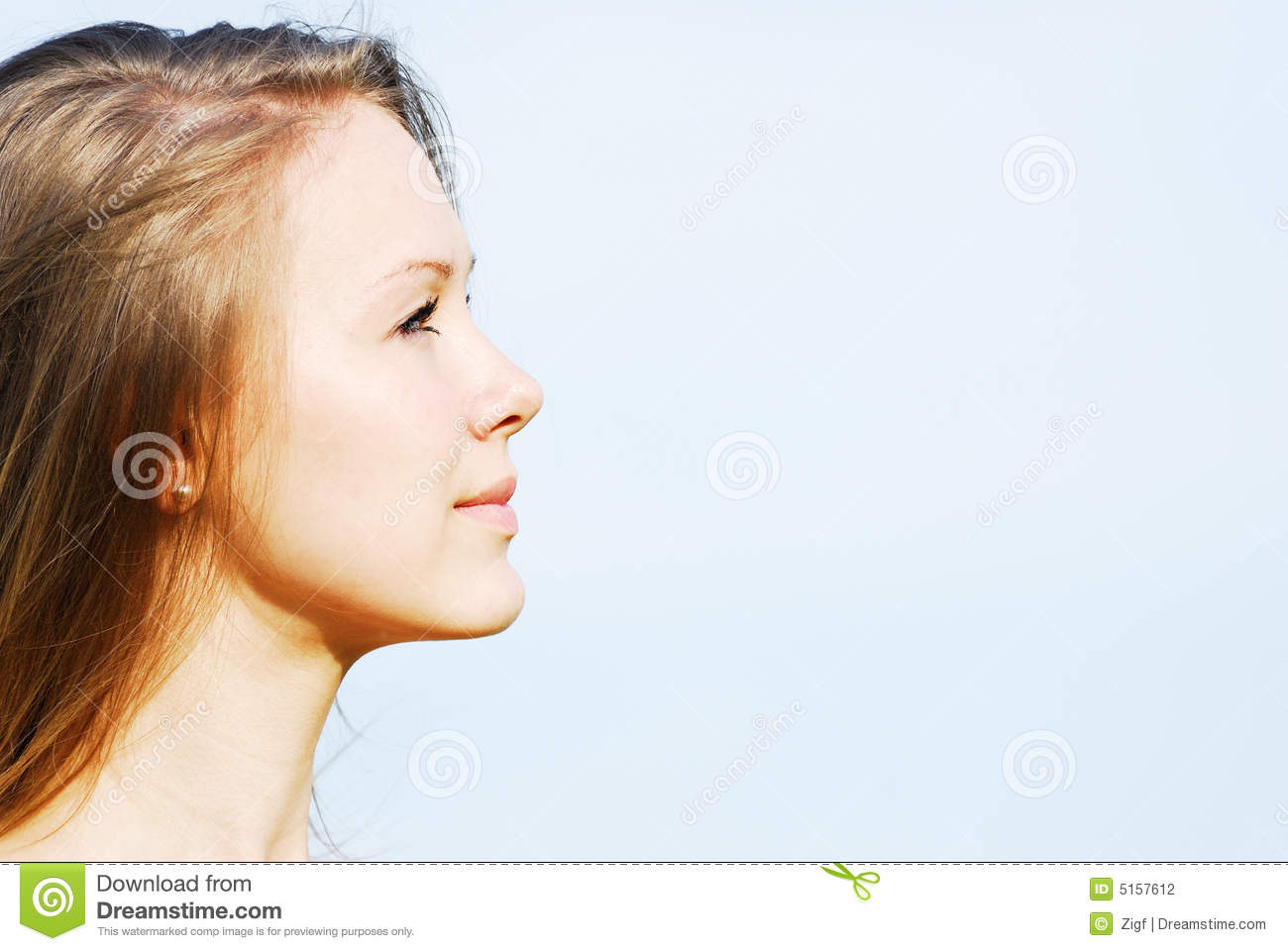 Profile Of The Face Of The Young Woman Stock Photo Image Of Head Majestic 5157612