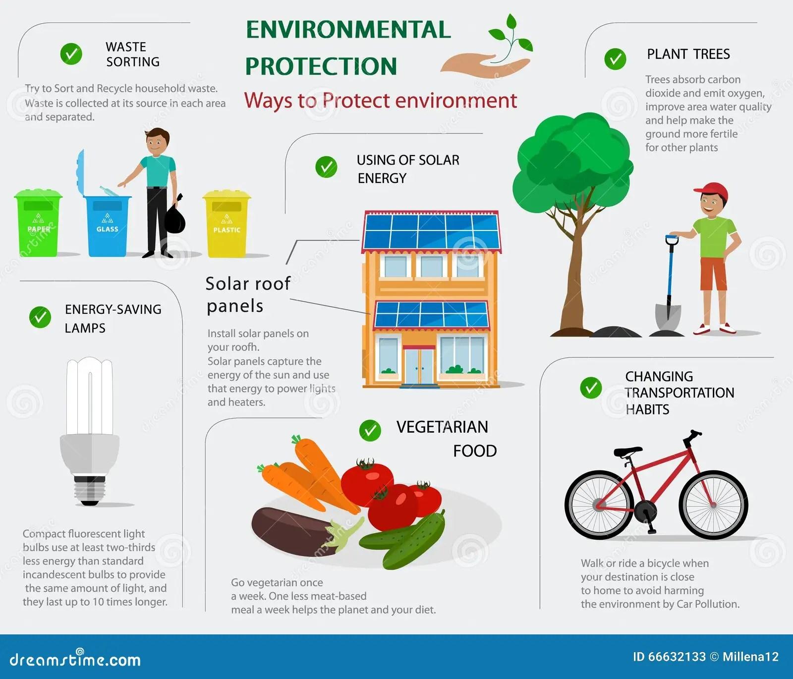 Protezione Dell Ambiente Infographic Concetto Piano Dei