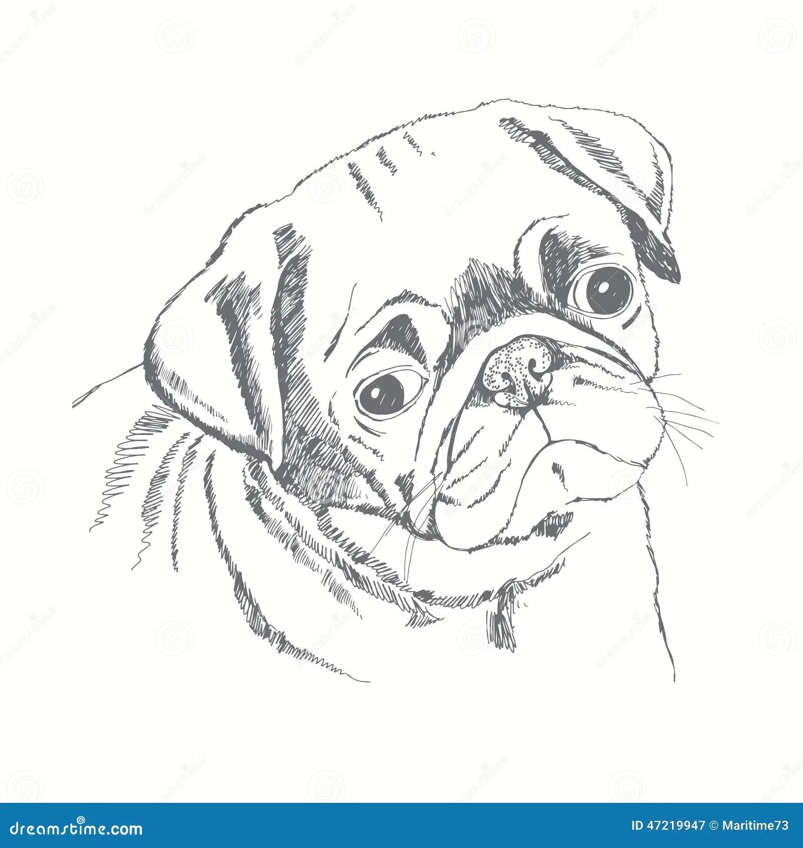 Cute Fat Pugs