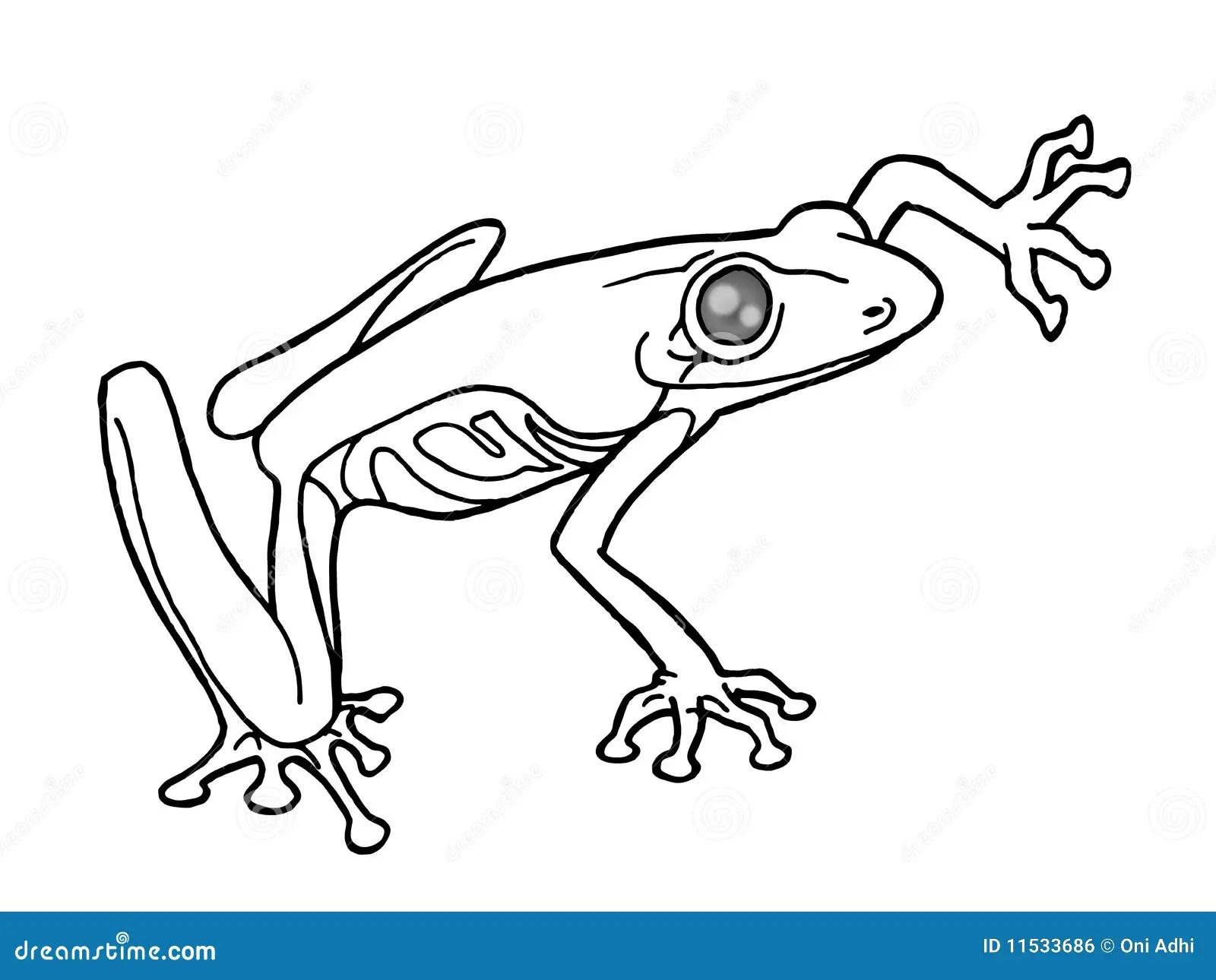 Rana In Bianco E Nero Illustrazione Di Stock